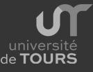Université François Rabelais - Tours